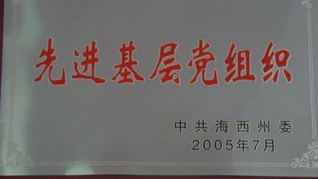 2005年先进基层党组织